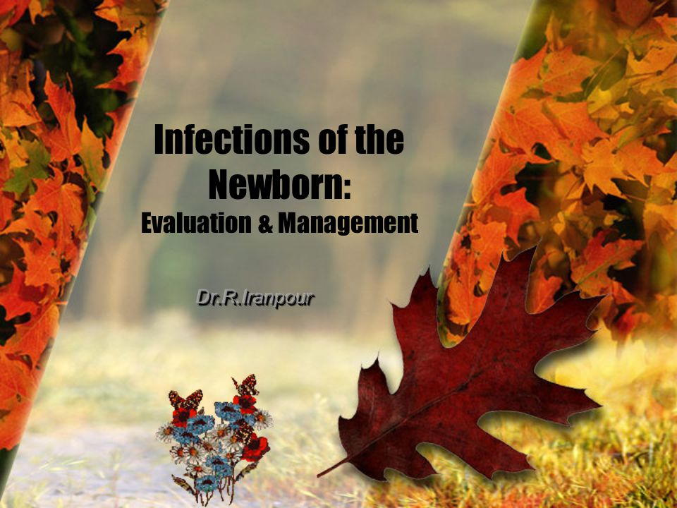 Infections of the Newborn: Evaluation & Management