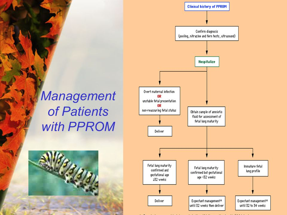 Management of Patients with PPROM
