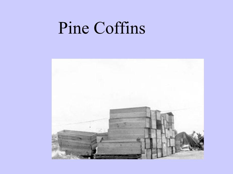 Pine Coffins