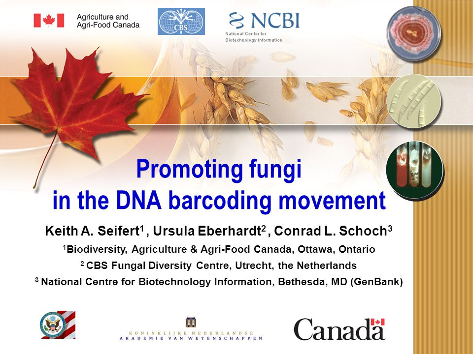 All Fungi Barcode of Life Planning Workshop Rossman, AY.
