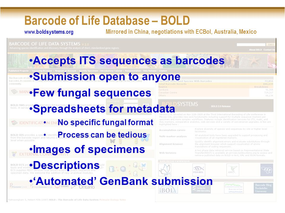 Barcode of Life Database – BOLD www.boldsystems.org Mirrored in China, negotiations with ECBol, Australia, Mexico Accepts ITS sequences as barcodes Submission open to anyone Few fungal sequences Spreadsheets for metadata No specific fungal format Process can be tedious Images of specimens Descriptions 'Automated' GenBank submission