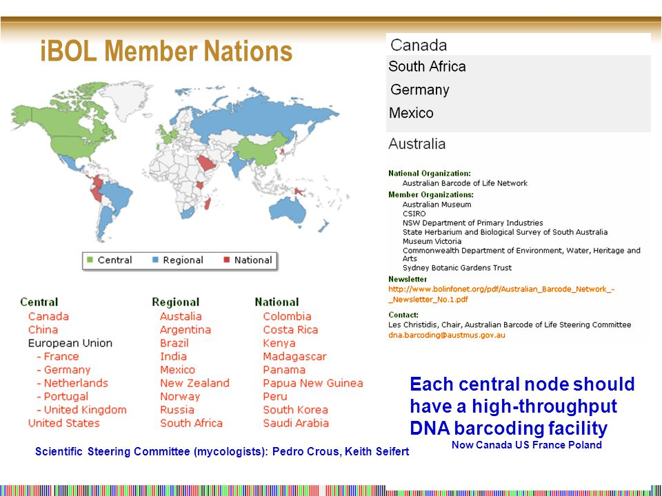 iBOL Member Nations Each central node should have a high-throughput DNA barcoding facility Now Canada US France Poland Scientific Steering Committee (mycologists): Pedro Crous, Keith Seifert