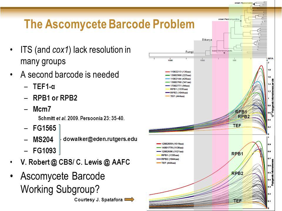 Fungi Dikarya per net TEF RPB2 RPB1 TEF RPB2 RPB1 The Ascomycete Barcode Problem ITS (and cox1 ) lack resolution in many groups A second barcode is needed – TEF1-α – RPB1 or RPB2 – Mcm7 Schmitt et al.