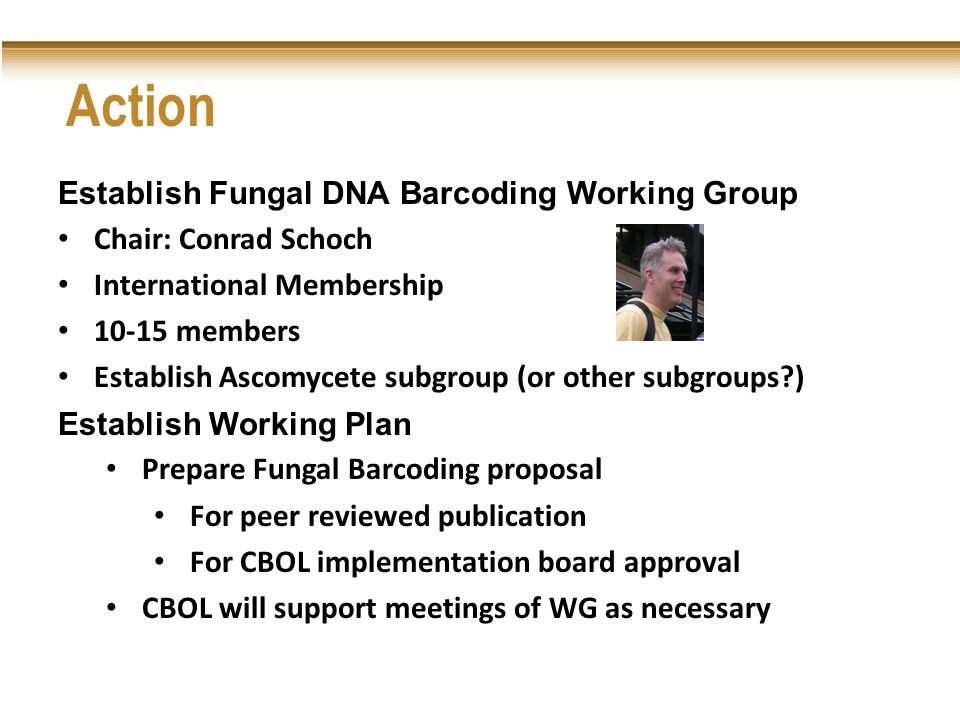 Action Establish Fungal DNA Barcoding Working Group Chair: Conrad Schoch International Membership 10-15 members Establish Ascomycete subgroup (or other subgroups?) Establish Working Plan Prepare Fungal Barcoding proposal For peer reviewed publication For CBOL implementation board approval CBOL will support meetings of WG as necessary