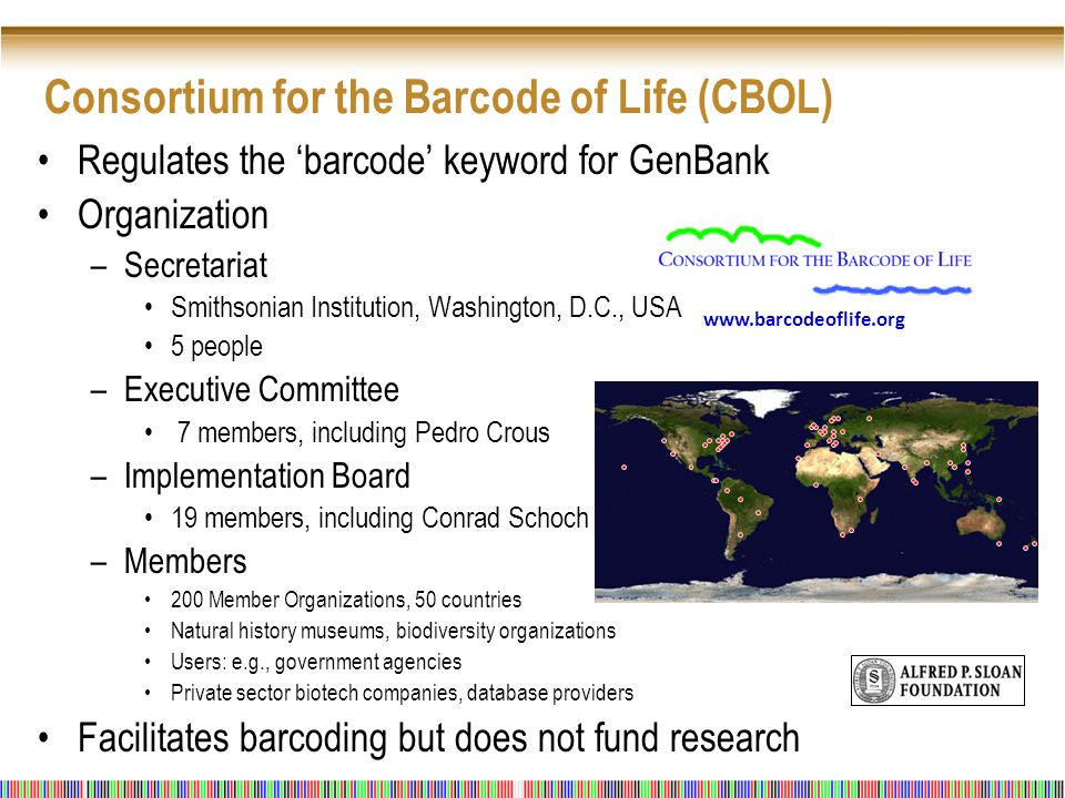 Consortium for the Barcode of Life (CBOL) Regulates the 'barcode' keyword for GenBank Organization –Secretariat Smithsonian Institution, Washington, D.C., USA 5 people –Executive Committee 7 members, including Pedro Crous –Implementation Board 19 members, including Conrad Schoch –Members 200 Member Organizations, 50 countries Natural history museums, biodiversity organizations Users: e.g., government agencies Private sector biotech companies, database providers Facilitates barcoding but does not fund research www.barcodeoflife.org