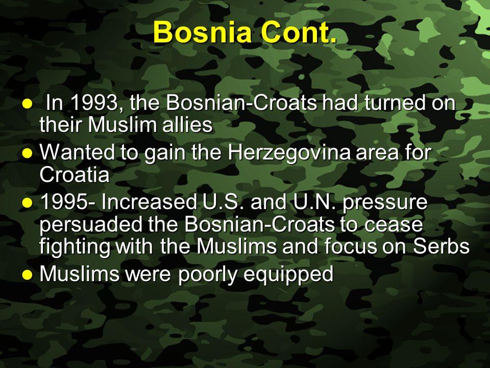Slide 15 Bosnia Cont.