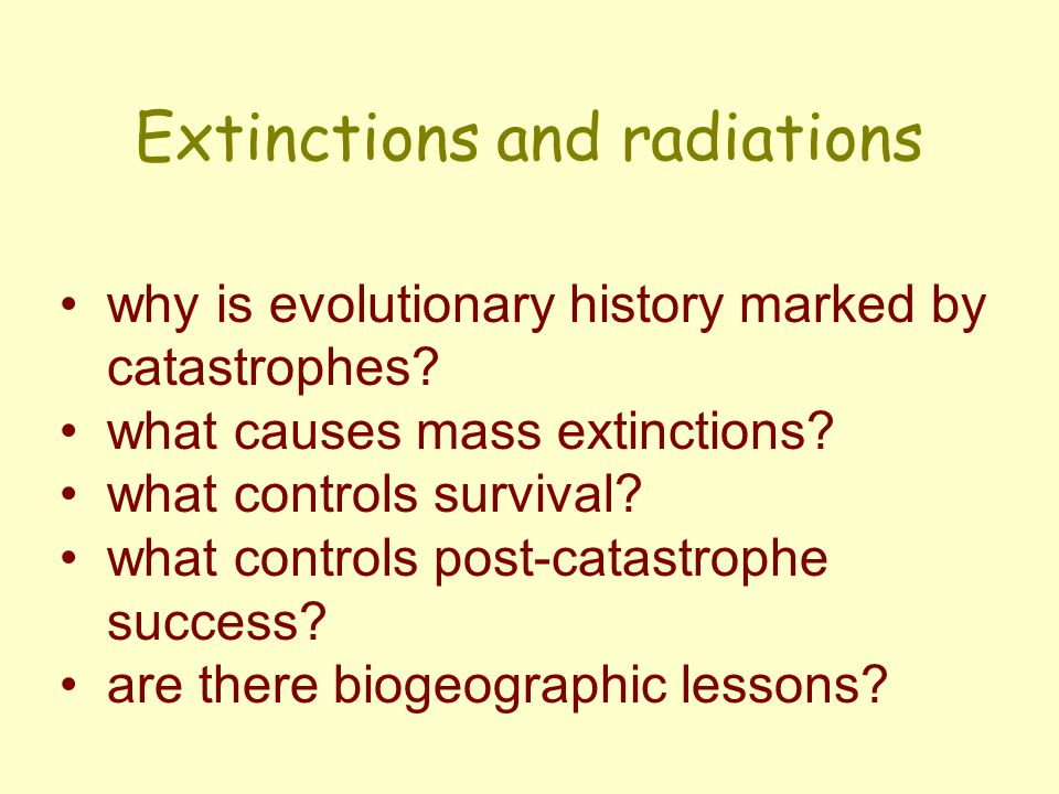 Extinctions and radiations why is evolutionary history marked by catastrophes.