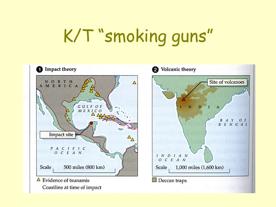 K/T smoking guns