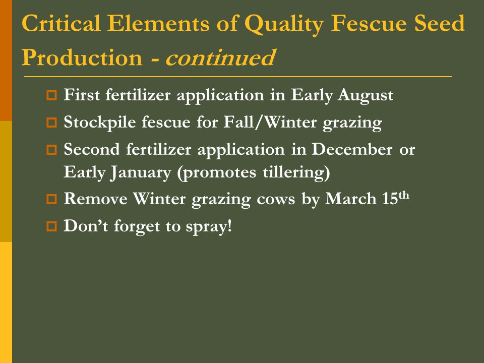 Critical Elements of Quality Fescue Seed Production - continued  First fertilizer application in Early August  Stockpile fescue for Fall/Winter grazing  Second fertilizer application in December or Early January (promotes tillering)  Remove Winter grazing cows by March 15 th  Don't forget to spray!
