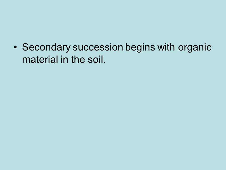 Secondary succession begins with organic material in the soil.