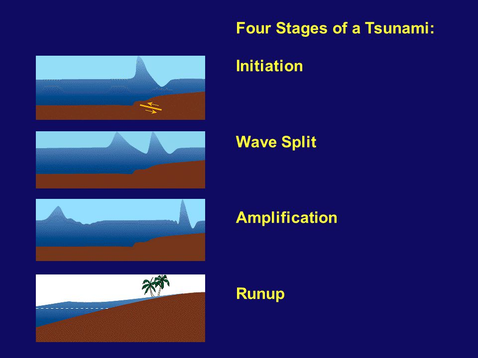 Four Stages of a Tsunami: Initiation Wave Split Amplification Runup