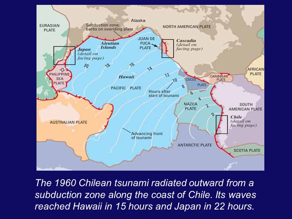 The 1960 Chilean tsunami radiated outward from a subduction zone along the coast of Chile. Its waves reached Hawaii in 15 hours and Japan in 22 hours.