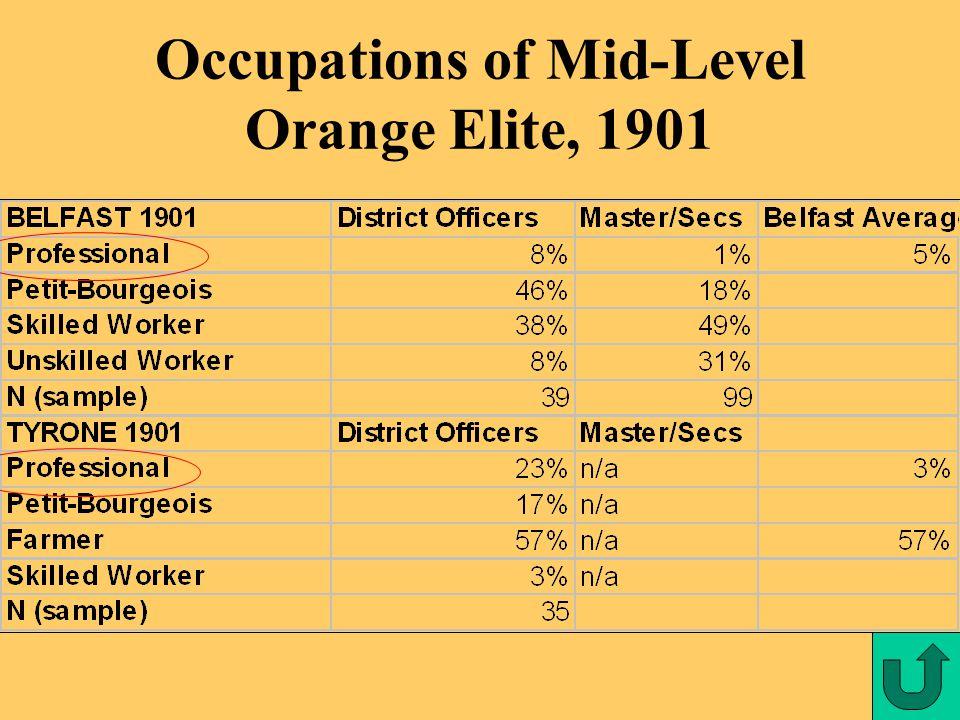 Occupations of Mid-Level Orange Elite, 1901