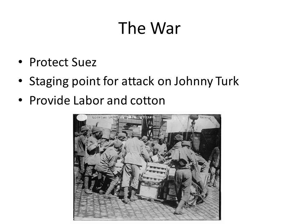 The War Protect Suez Staging point for attack on Johnny Turk Provide Labor and cotton