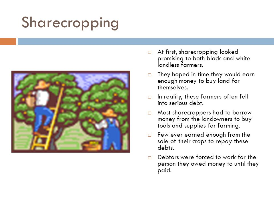 Sharecropping  At first, sharecropping looked promising to both black and white landless farmers.