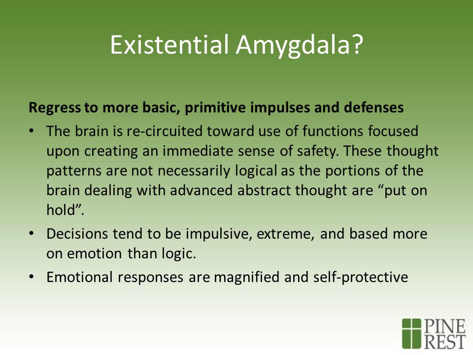 Existential Amygdala? Regress to more basic, primitive impulses and defenses The brain is re-circuited toward use of functions focused upon creating a