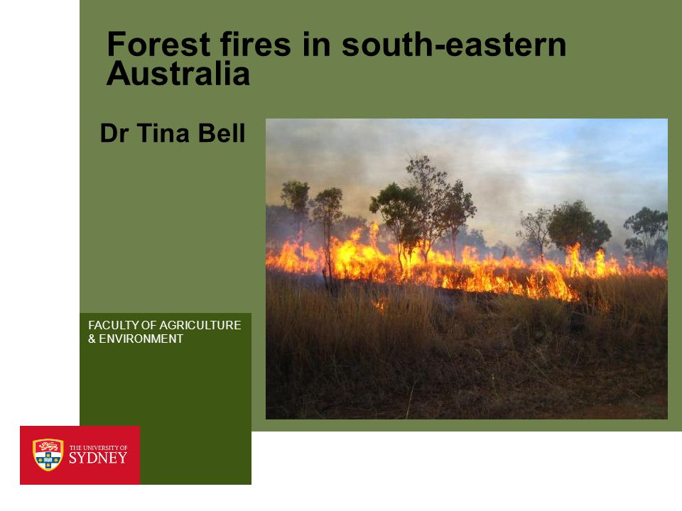 FACULTY OF AGRICULTURE & ENVIRONMENT Forest fires in south-eastern Australia Dr Tina Bell