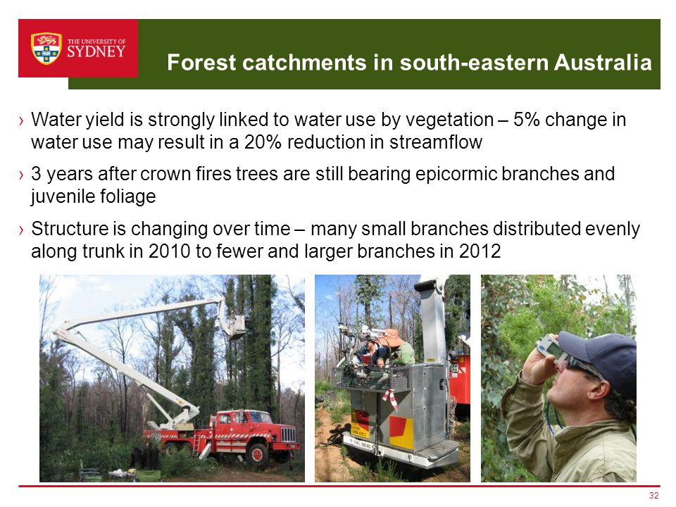 Forest catchments in south-eastern Australia ›Water yield is strongly linked to water use by vegetation – 5% change in water use may result in a 20% r