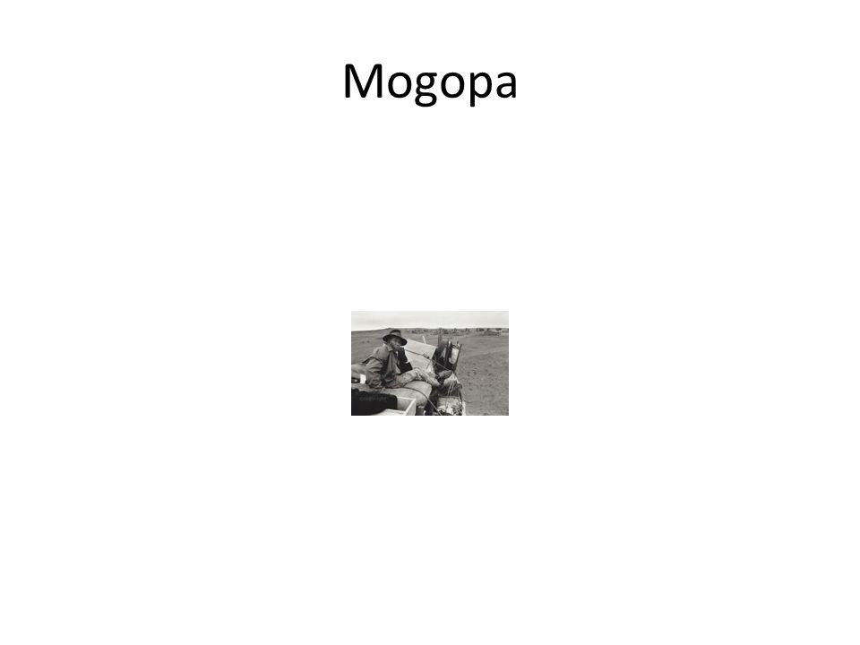 Mogopa