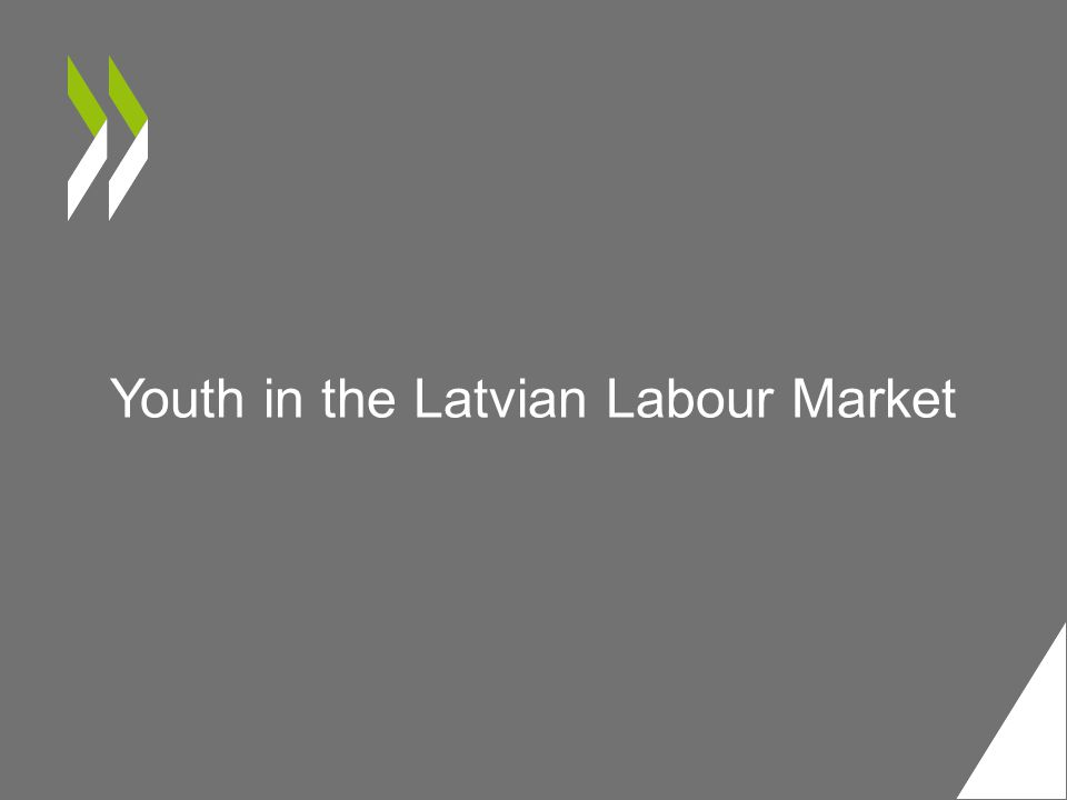Youth in the Latvian Labour Market