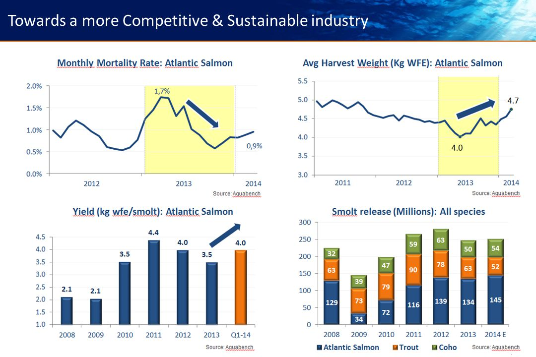 19 Towards a more Competitive & Sustainable industry