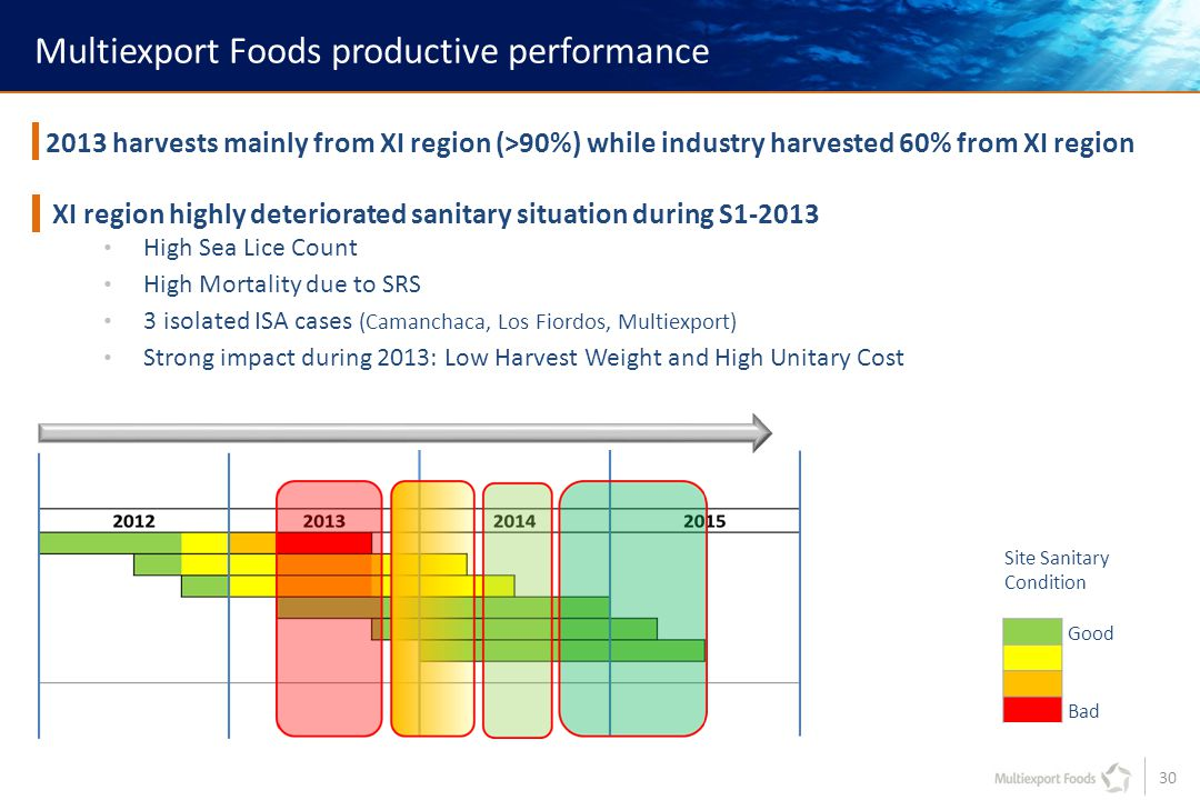 30 Multiexport Foods productive performance 2013 harvests mainly from XI region (>90%) while industry harvested 60% from XI region XI region highly deteriorated sanitary situation during S1-2013 High Sea Lice Count High Mortality due to SRS 3 isolated ISA cases (Camanchaca, Los Fiordos, Multiexport) Strong impact during 2013: Low Harvest Weight and High Unitary Cost Site Sanitary Condition Good Bad