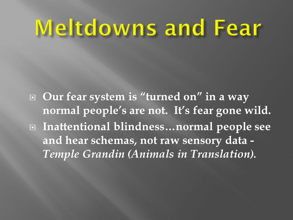  Our fear system is turned on in a way normal people's are not.