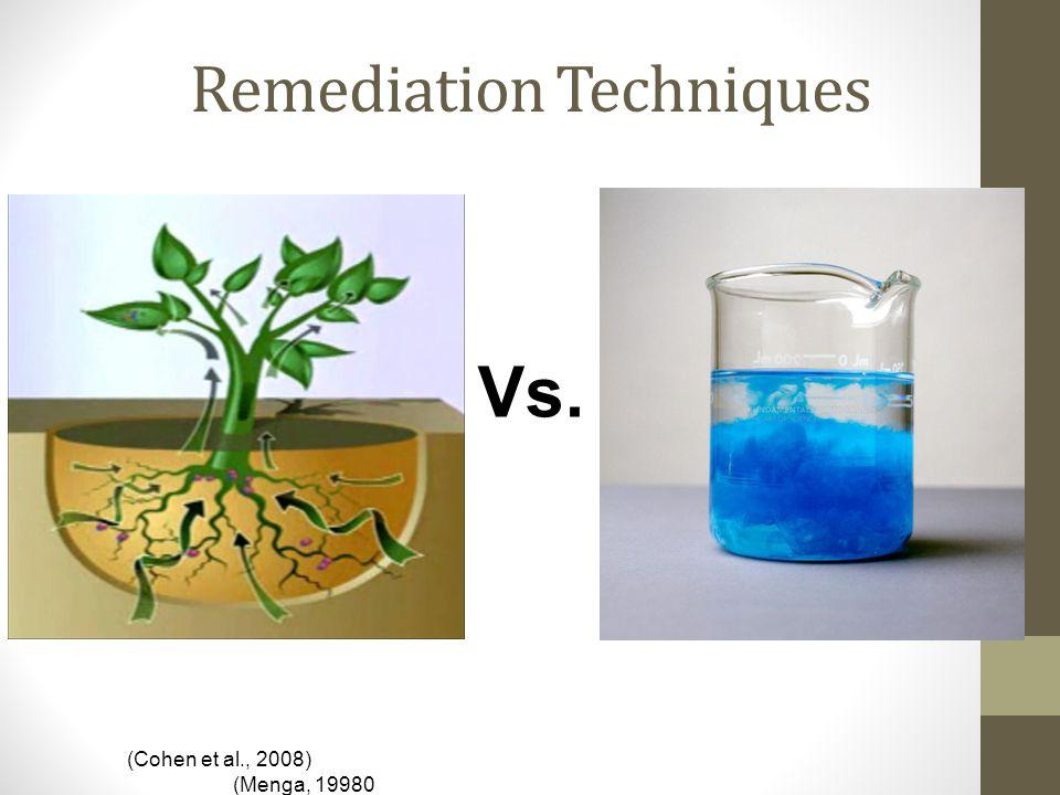 Remediation Techniques Vs. (Cohen et al., 2008) (Menga, 19980