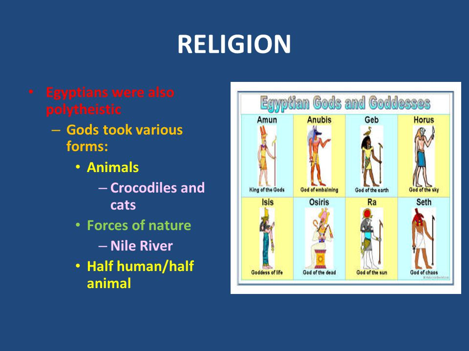 RELIGION Egyptians were also polytheistic – Gods took various forms: Animals – Crocodiles and cats Forces of nature – Nile River Half human/half anima
