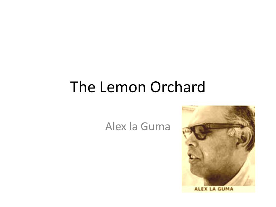 The Lemon Orchard Alex la Guma