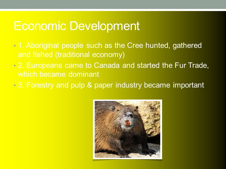 Economic Development 1. Aboriginal people such as the Cree hunted, gathered and fished (traditional economy) 2. Europeans came to Canada and started t