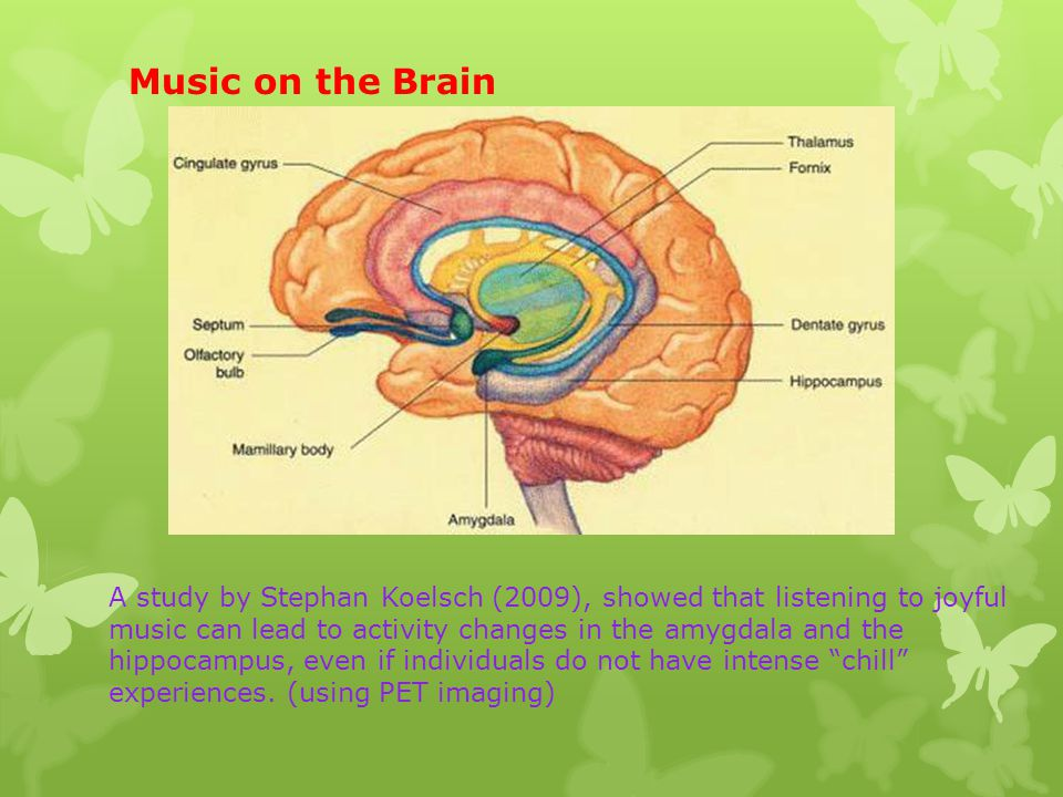 Music on the Brain A study by Stephan Koelsch (2009), showed that listening to joyful music can lead to activity changes in the amygdala and the hippocampus, even if individuals do not have intense chill experiences.