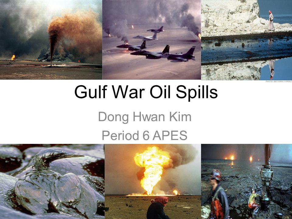 Gulf War Oil Spills Dong Hwan Kim Period 6 APES