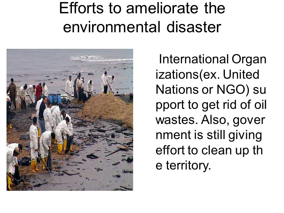 Efforts to ameliorate the environmental disaster International Organ izations(ex.