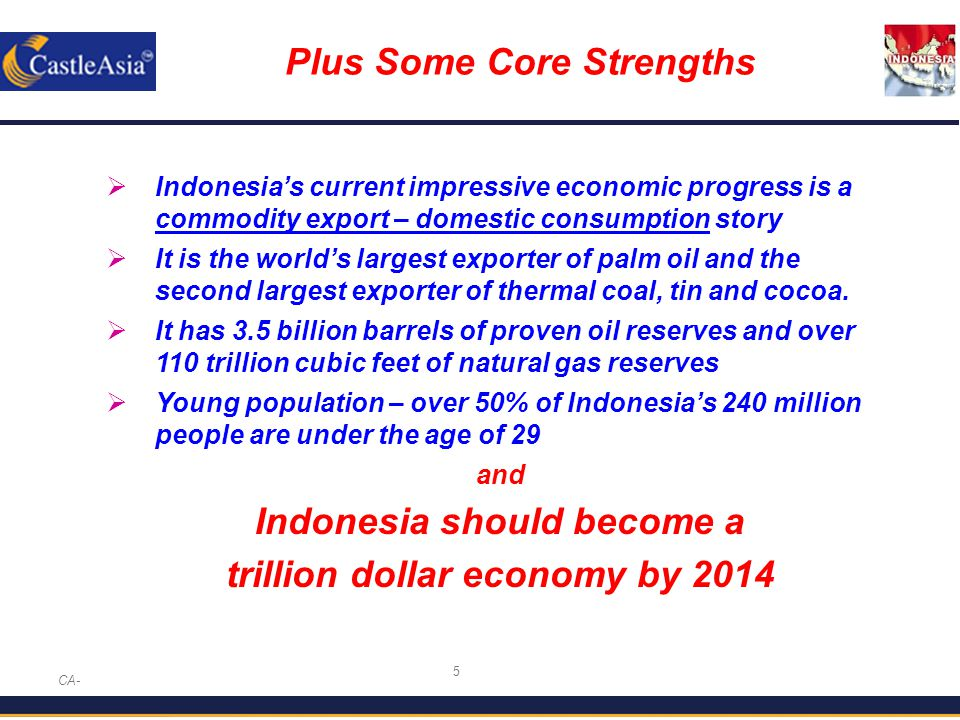 5 Plus Some Core Strengths CA-  Indonesia's current impressive economic progress is a commodity export – domestic consumption story  It is the world's largest exporter of palm oil and the second largest exporter of thermal coal, tin and cocoa.