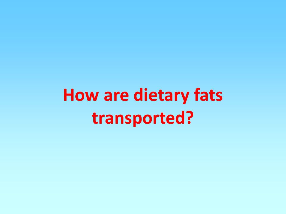 How are dietary fats transported