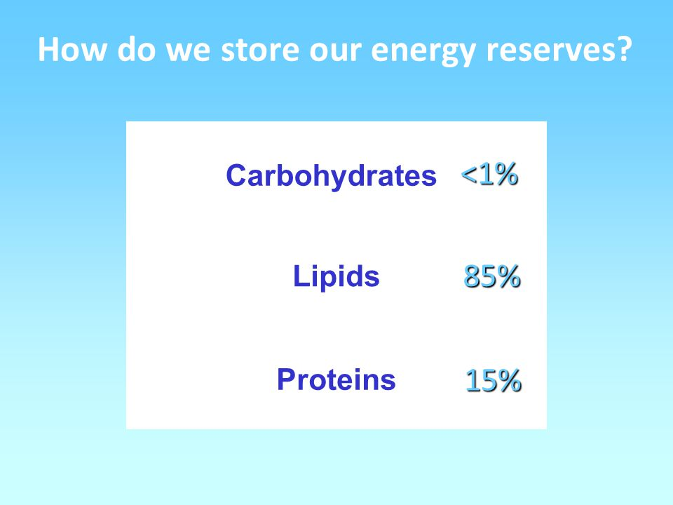 How do we store our energy reserves Carbohydrates Lipids Proteins 85% 15% <1%