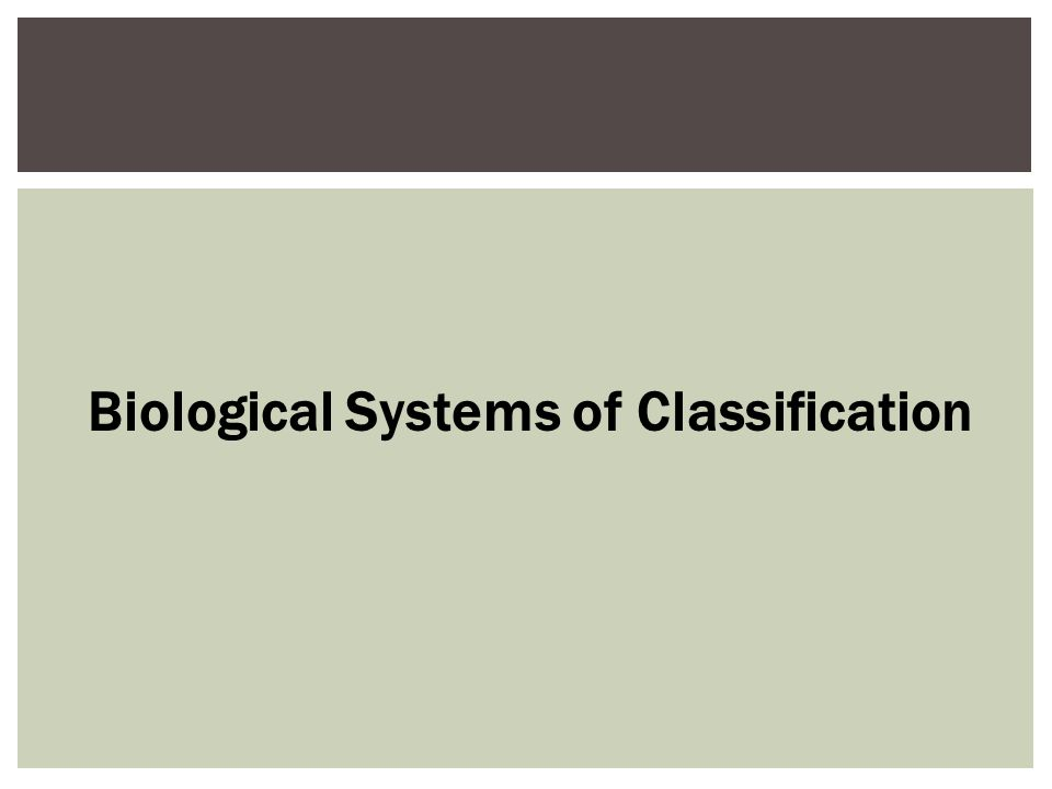 What are the systems of classification used here?