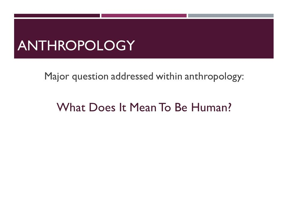 ANTHROPOLOGY Major question addressed within anthropology: What Does It Mean To Be Human