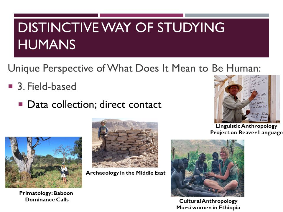 DISTINCTIVE WAY OF STUDYING HUMANS Unique Perspective of What Does It Mean to Be Human:  3.