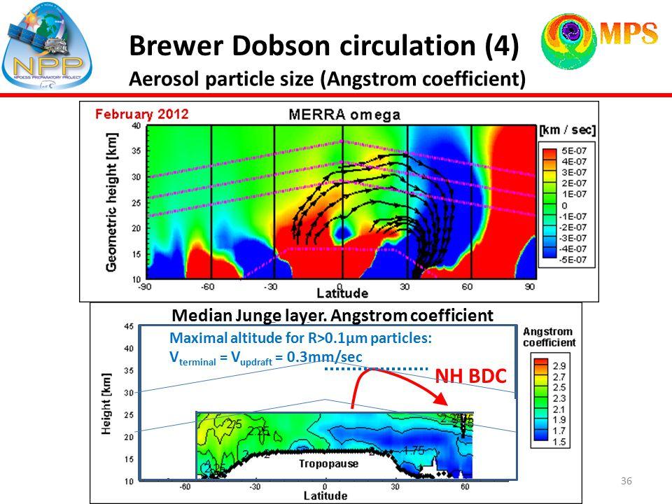 36 Brewer Dobson circulation (4) NH BDC Median Junge layer.