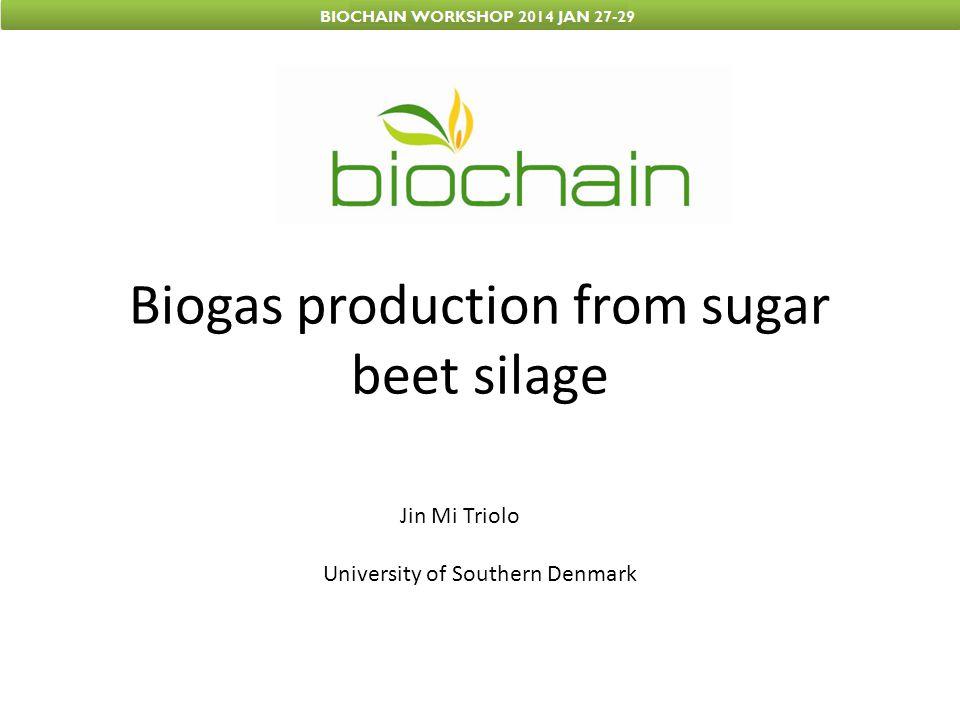Why sugar beet silage.