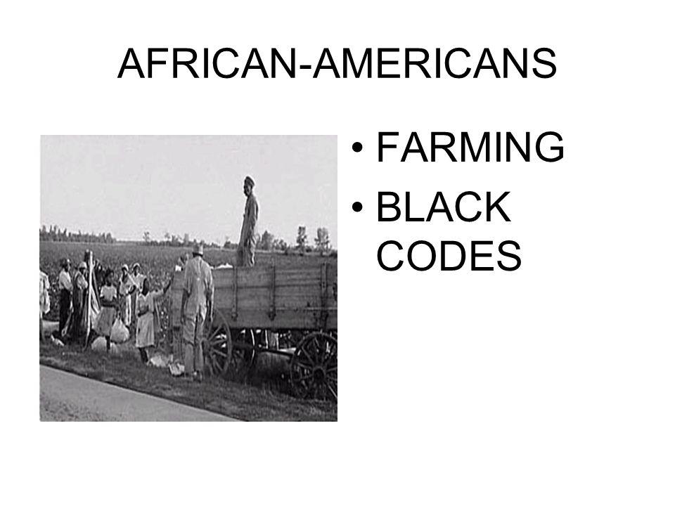 AFRICAN-AMERICANS FARMING BLACK CODES