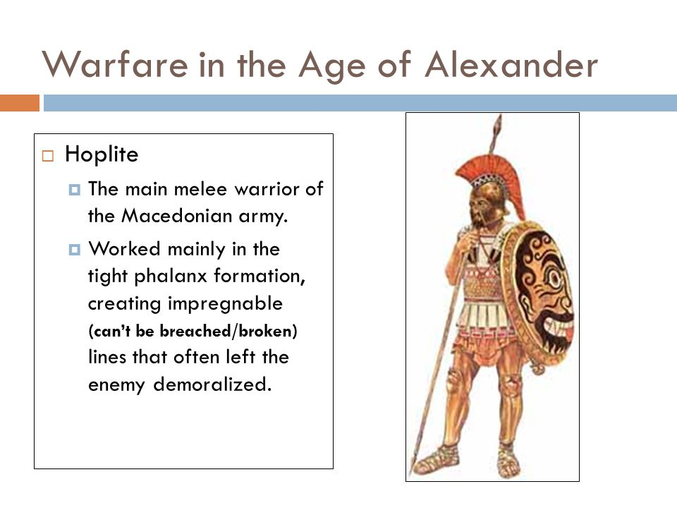 Warfare in the Age of Alexander  Hoplite  The main melee warrior of the Macedonian army.
