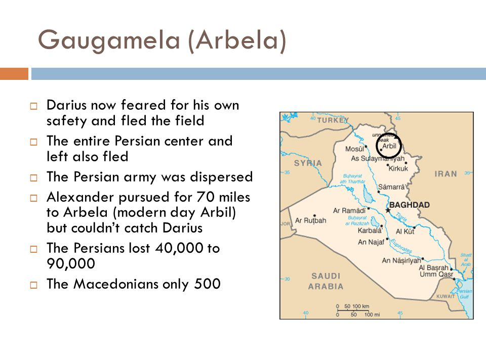 Gaugamela (Arbela)  Darius now feared for his own safety and fled the field  The entire Persian center and left also fled  The Persian army was dispersed  Alexander pursued for 70 miles to Arbela (modern day Arbil) but couldn't catch Darius  The Persians lost 40,000 to 90,000  The Macedonians only 500