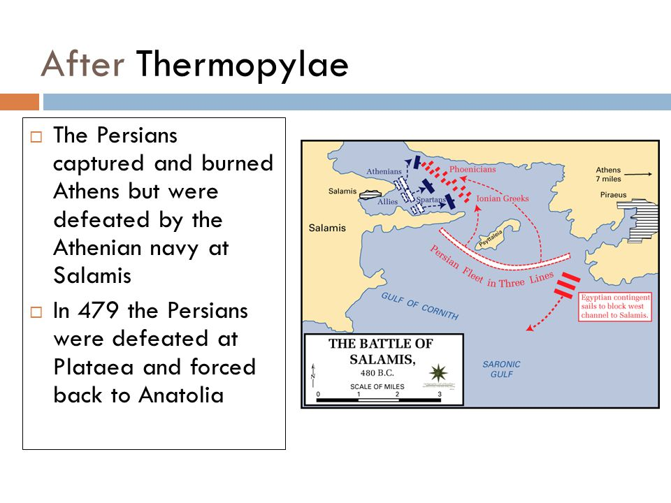 After Thermopylae  The Persians captured and burned Athens but were defeated by the Athenian navy at Salamis  In 479 the Persians were defeated at Plataea and forced back to Anatolia