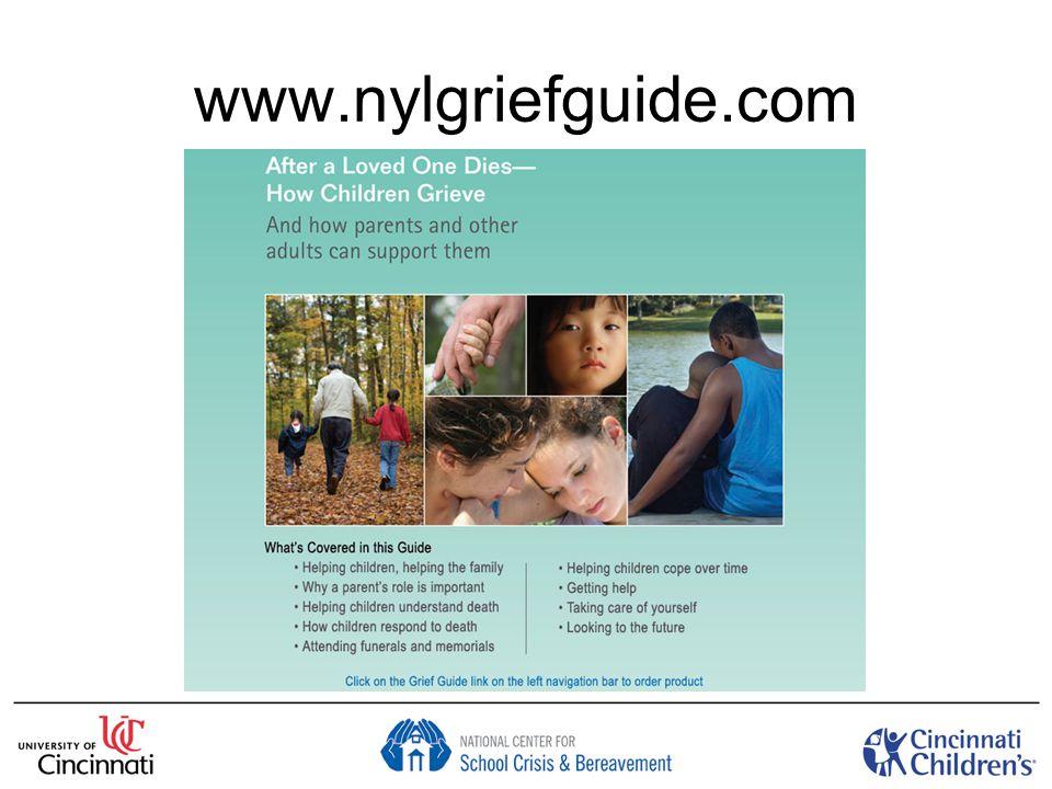 www.nylgriefguide.com