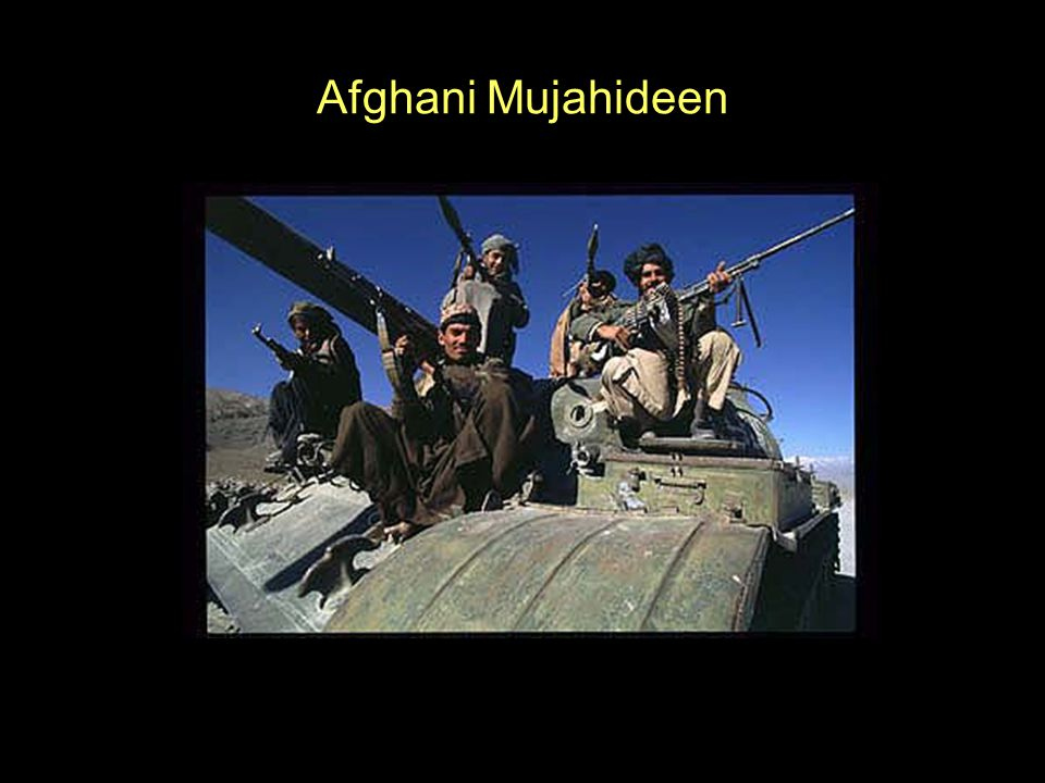 Afghani Mujahideen
