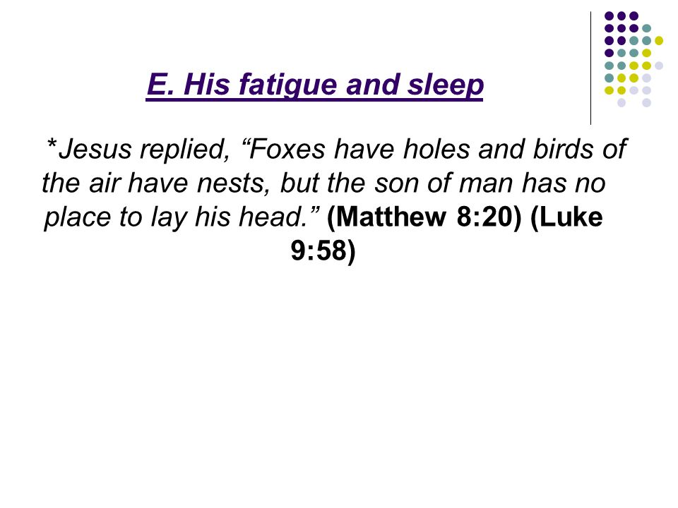 """E. His fatigue and sleep *Jesus replied, """"Foxes have holes and birds of the air have nests, but the son of man has no place to lay his head."""" (Matthew"""