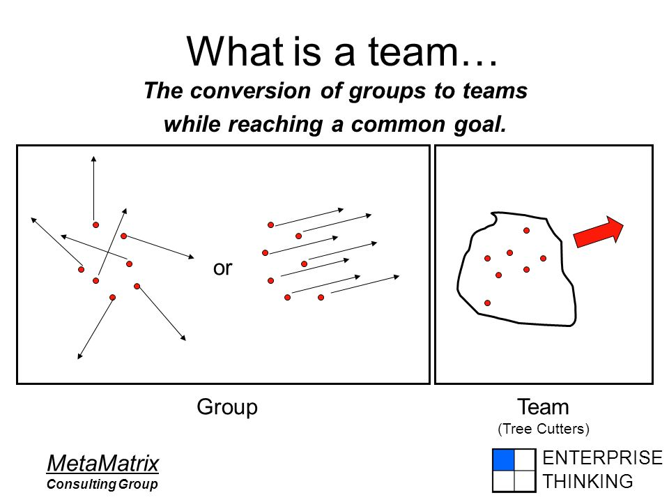 ENTERPRISE THINKING MetaMatrix Consulting Group What is a team… The conversion of groups to teams while reaching a common goal. GroupTeam (Tree Cutter